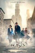 Watch Fantastic Beasts and Where to Find Them Online 123movies